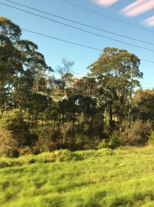 Tahmoor (NSW) 8:46am